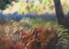 trail ferns cooler.jpg
