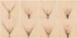 Vaginal_02B.png