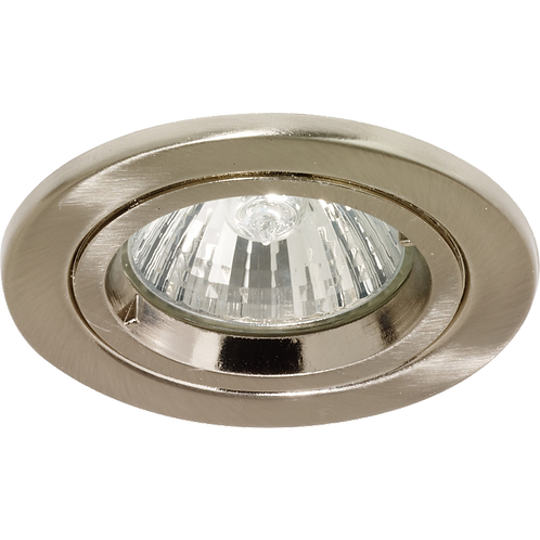 Cast Ring Fixed Downlight Satin Nickel