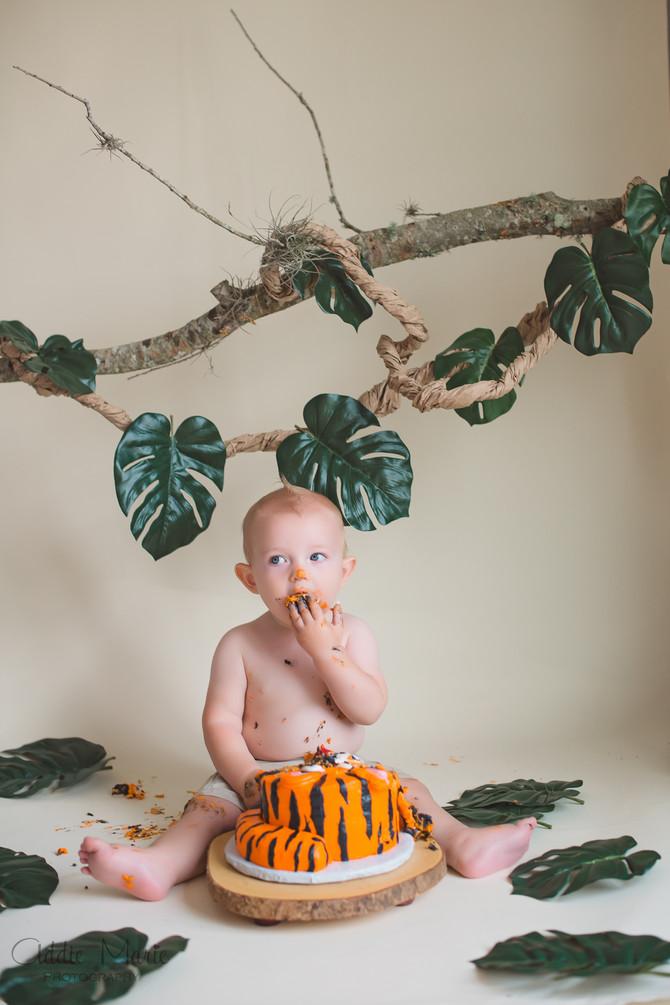 Titus' 1 Year Smash Cake - Orlando Child Photographer