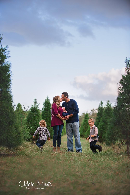 Orlando Christmas Tree Mini Session