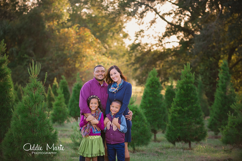 Ocala Christmas Tree Mini Session