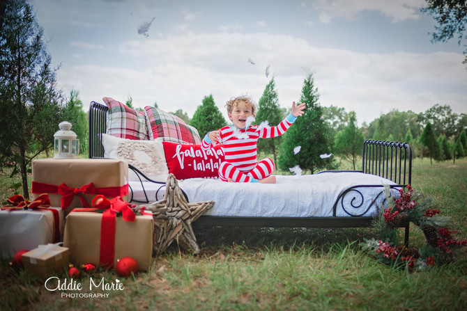 Christmas Tree Mini Sessions - Orlando Photographer