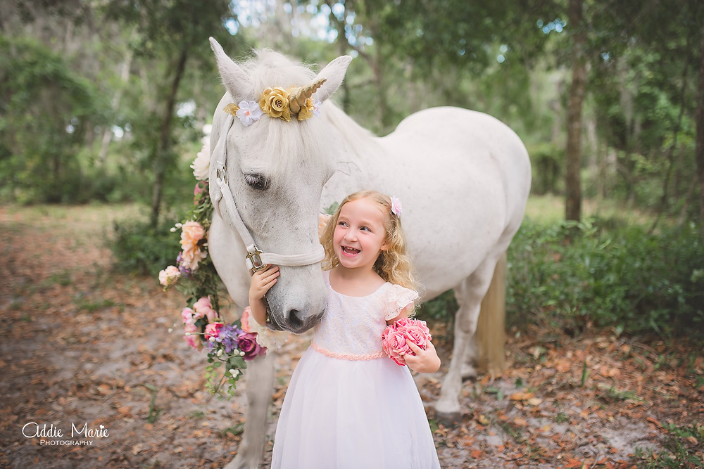 Unicorn Mini Session Orlando Photographer