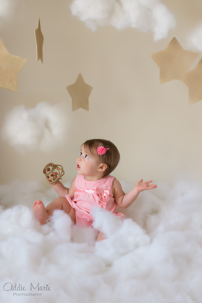 Audrina Turns 1! Ladybug Birthday Photoshoot - Oviedo Child Photographer