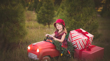 ADDIE MARIE PHOTOGRAPHY               2016 Holiday Mini Sessions