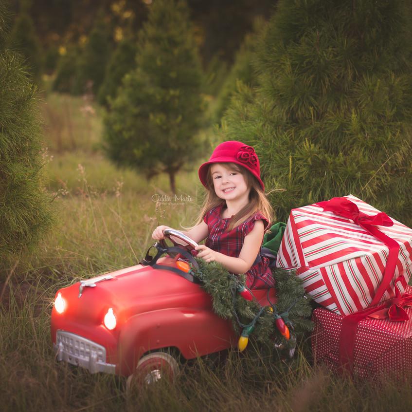 Orlando Christmas Tree Minis