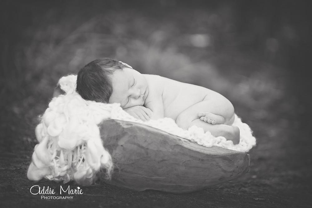 Oviedo Newborn Photographer