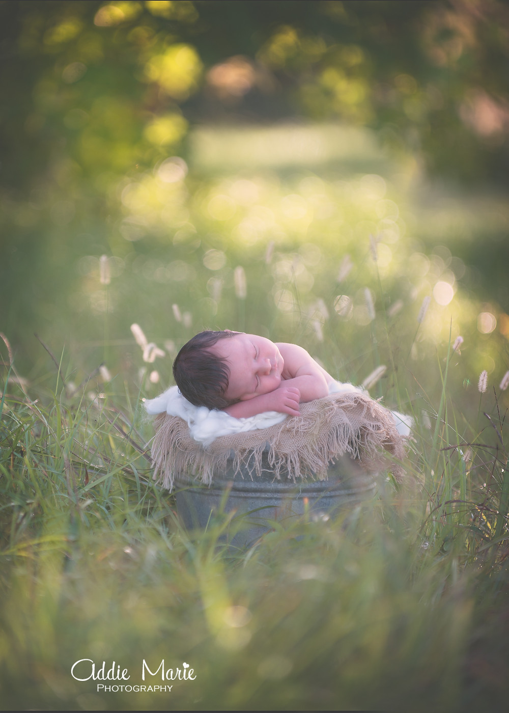 Oviedo Newborn Photographer