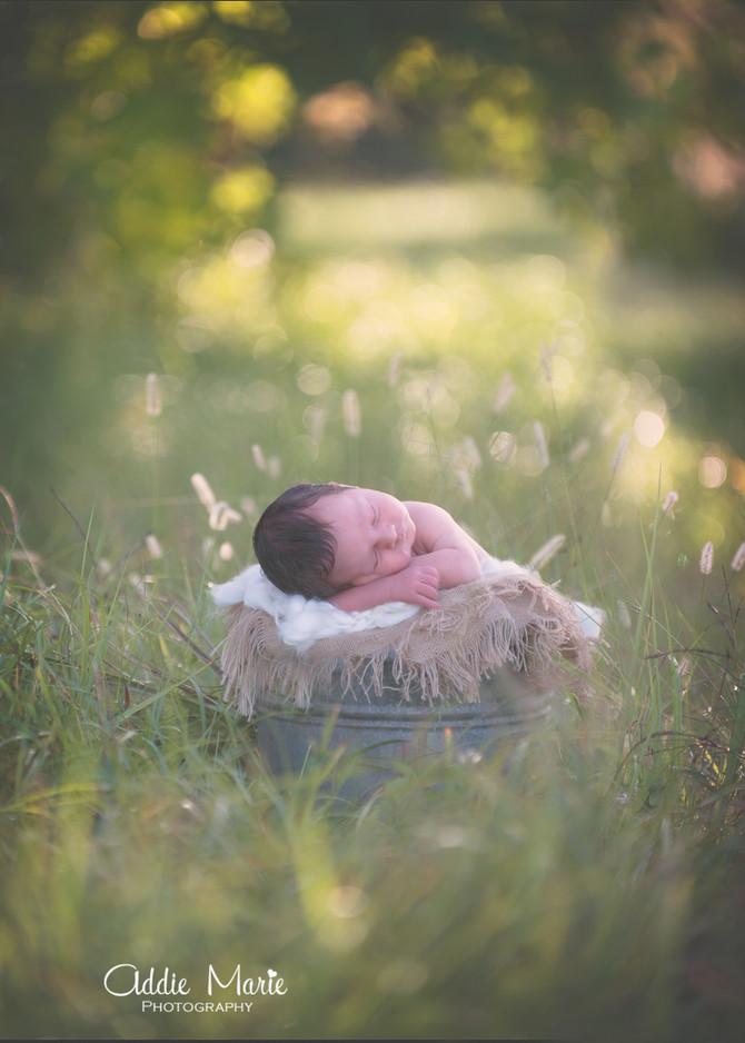 Newborn Outdoor Session - Oviedo Photographer