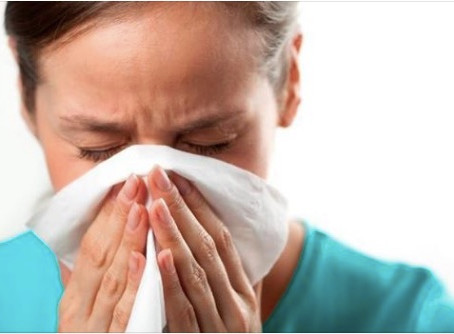 "How To Fight ""The Cold"" During Flu Season - Family Tree Primary Care - Orlando Florida&#39"