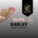 Supa Barley, barley, ge free barley nz, nz barley