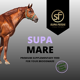 Supa Mare - broodmare feed, feed for horses lactating