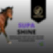 Supa Shine, Maintenance Horse Feed