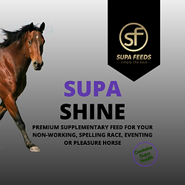 Supa Shine - maintenance horse feed