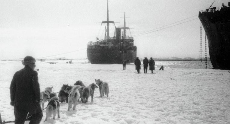 Из истории ледокола Челюскин