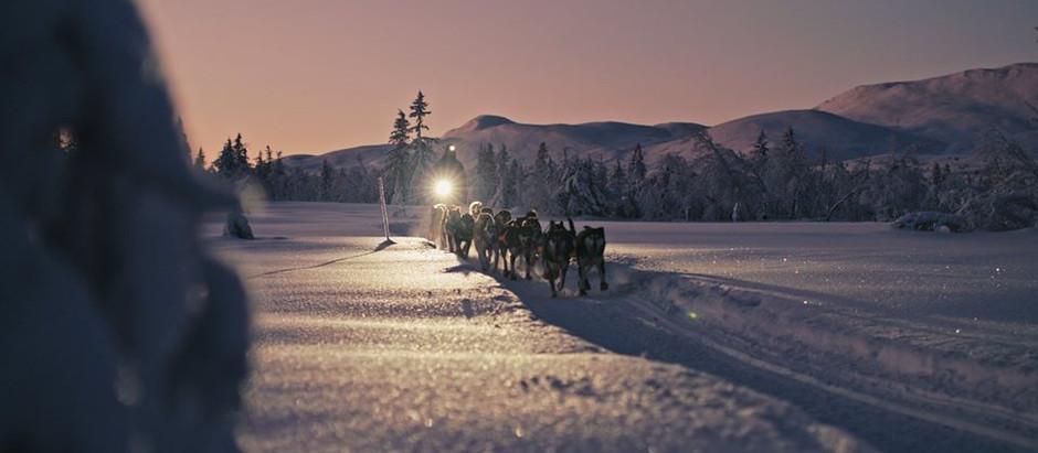 Экспедиция 2011 года