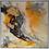 Thumbnail: Abstract Designs
