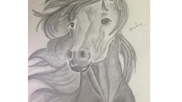 Horse- Aashna Aggarwal