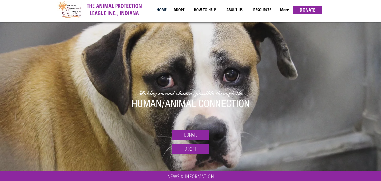 The Animal Protection League | Anderson, IN