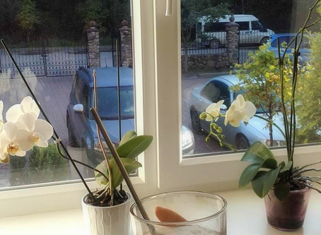 Starting day with good coffee and sunny morning in B&B Idile!