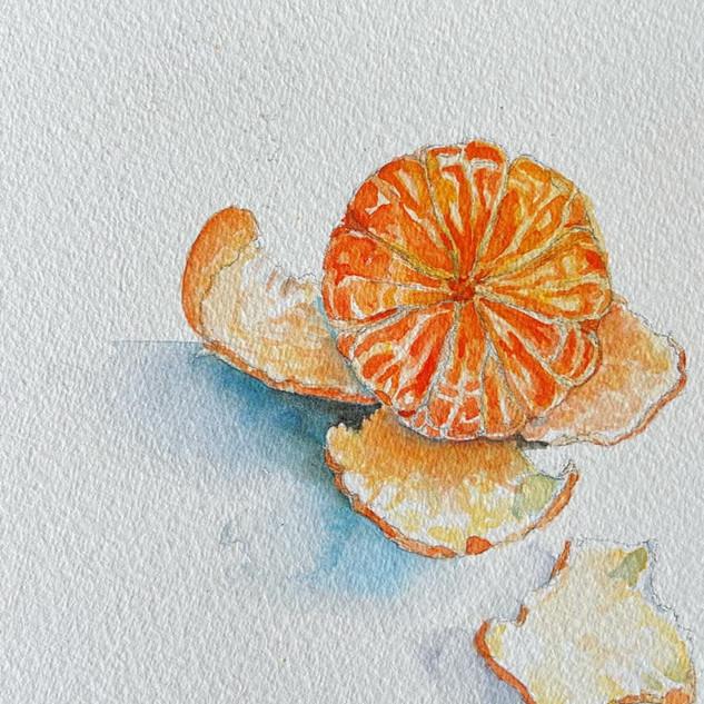 OrangeStudy.jpg