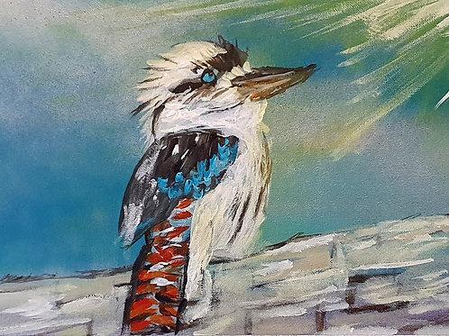 Enlightened kookaburra
