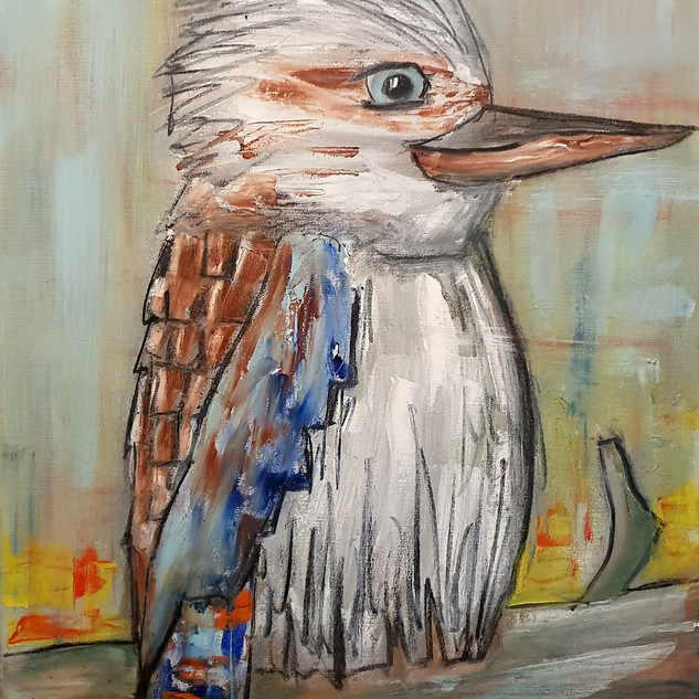 Kookaburra.jpg
