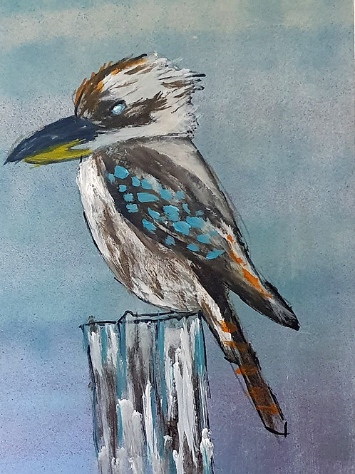 Kookaburra on stump