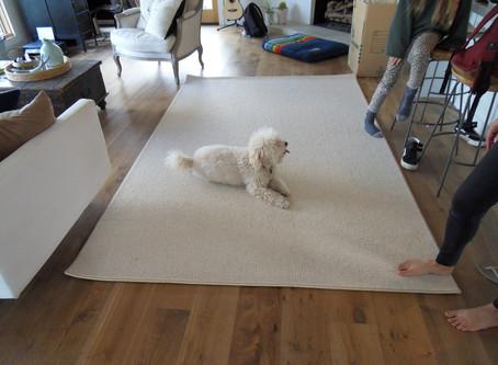 Custom made area rug