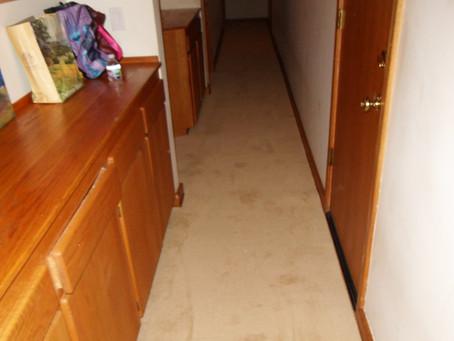 Custom Shaped Carpet for Hallway