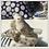 Thumbnail: Love bird de Safari Jewelry box