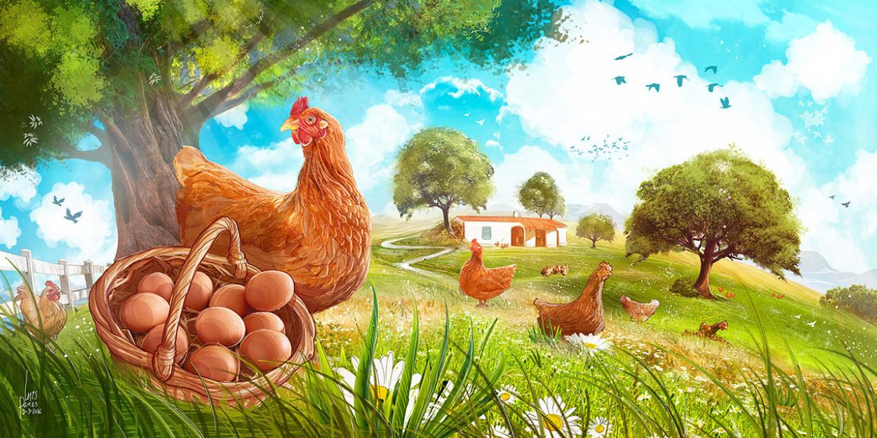 Children-Book-Art-Happy-Chicken-Farm.jpg