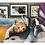 Thumbnail: Quebra Cabeça - Puzzle - Melhores Amigos