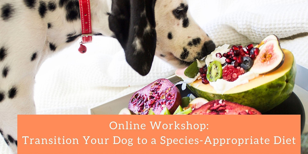 Transition Your Dog to a Species-Appropriate  Diet
