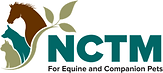 NCTM logo.png