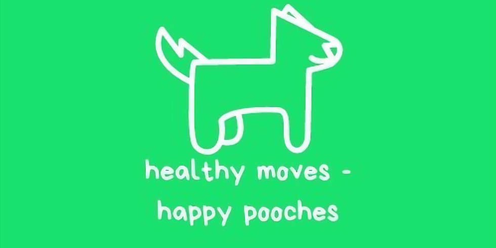 healthy moves, happy pooches