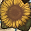 Thumbnail: Sunflower Sun Catcher