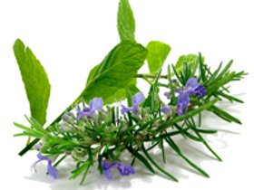 Wake UP! (Rosemary and Mint)