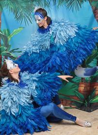 oiseaux bleus.jpeg
