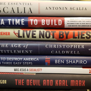 2020년의 Top 7 보수주의 책 (미국)