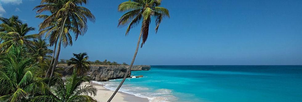 Barbados-mooiste-strand%20(1)_edited.jpg