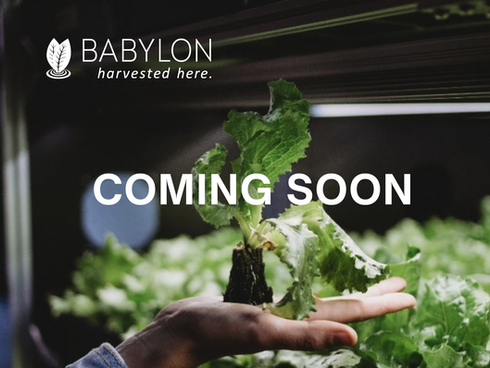 Indoor Farming Designed for You