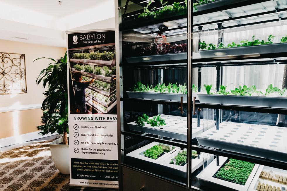 Babylon Micro-Farms Instilation