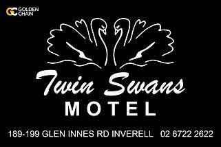 Twin Swans Leaderboard 1920x1280px-01.jp