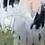 Thumbnail: Elephant, 36x48x1.5 acrylic on canvas
