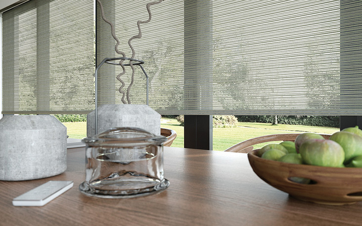 Roller Shade Light Flitering Sheer Fabric