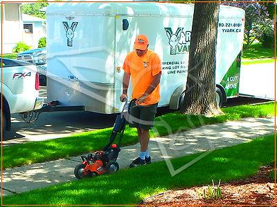yardvark property services summer