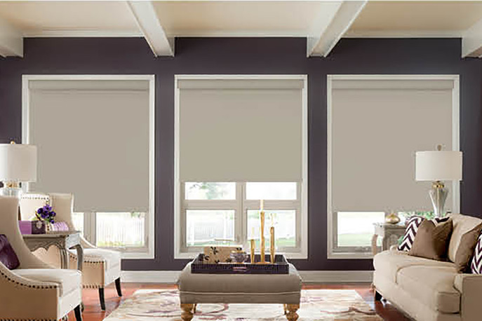 Roller Shade Room Darkening Plain Fabric
