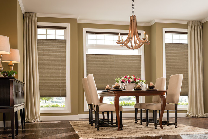 Pleated Shades with Draperies